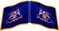 2nd Kansas Colored Infantry dynamic flag